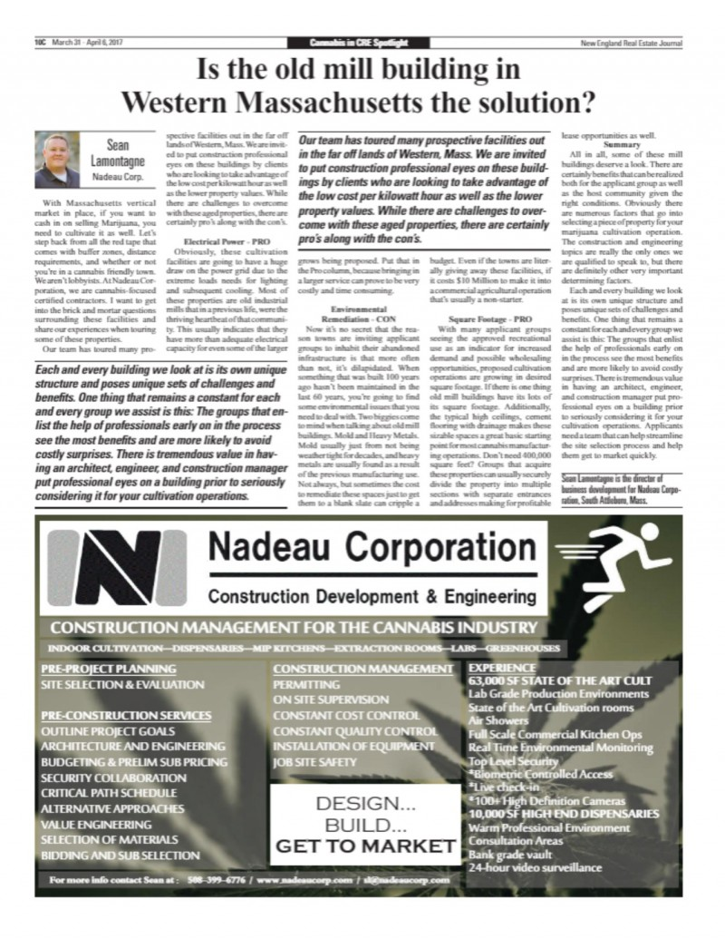 Nadeau Cannabis Article